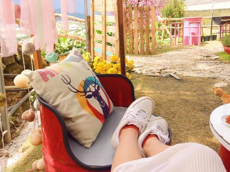 Cafe Sunny Farm