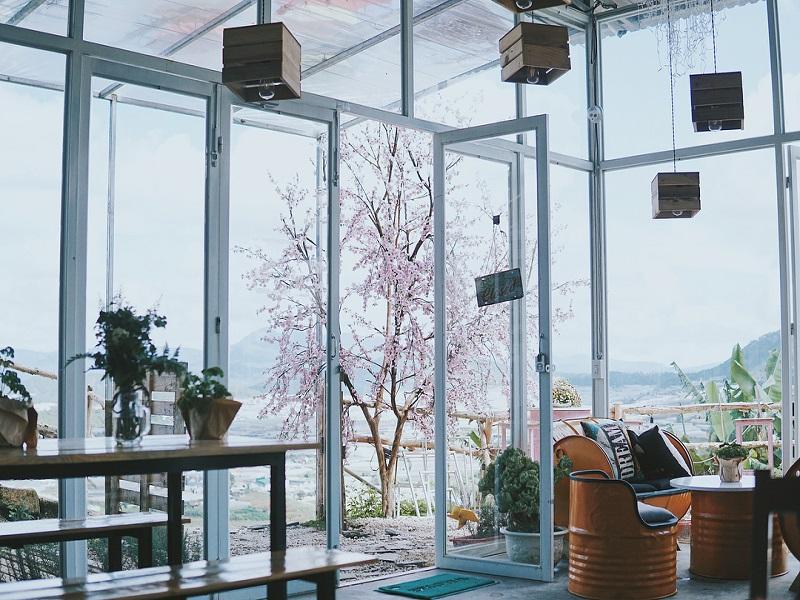 Quán cafe ở Sunny Farm