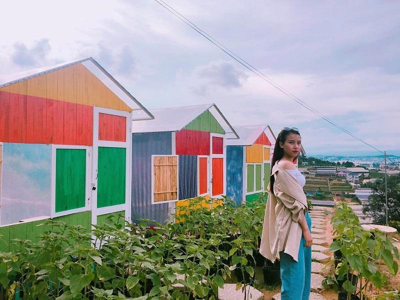 Những căn lều nhiều màu sắc ở Sunny Farm