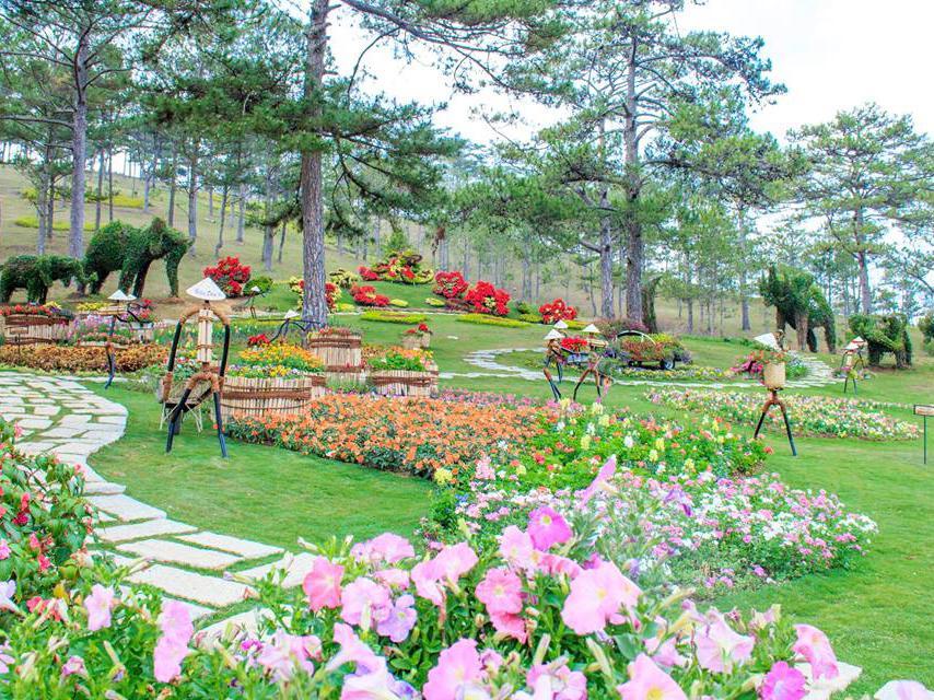 Một góc vườn hoa khác trong thung lũng