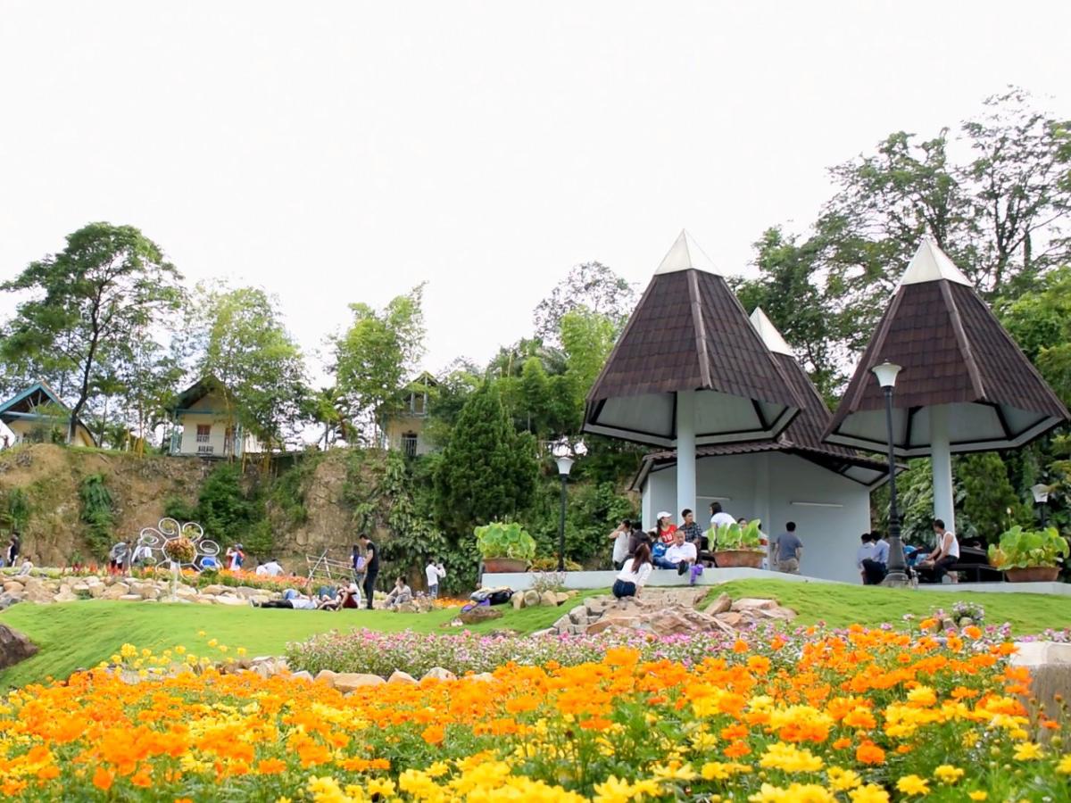 Vườn hoa trong thung lung tinh yeu