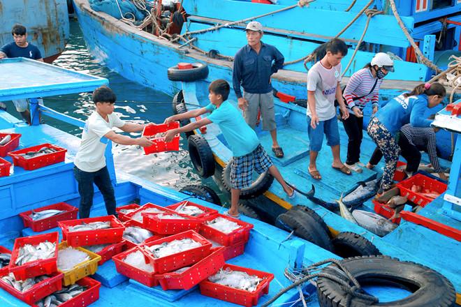 Ngư dân chuyển cá vào bờ tại cảng