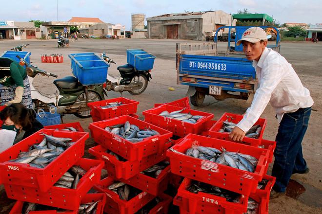 Mua hải sản tại chợ