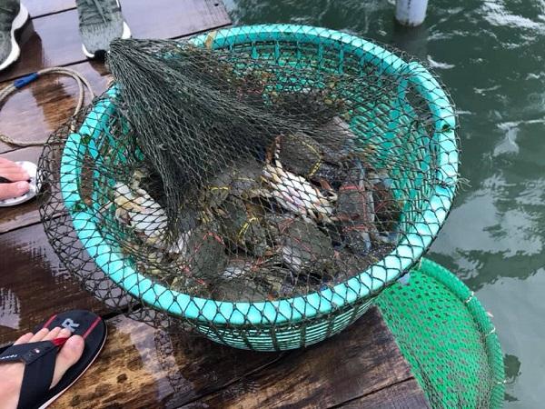 Hải sản tươi sống mới đánh bắt