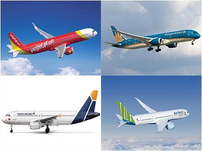 Các hãng bay nội địa
