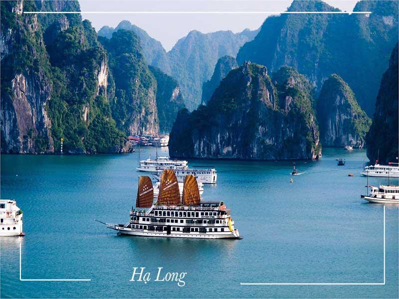 Tour du lịch Hạ Long giá rẻ 3 ngày 2 đêm