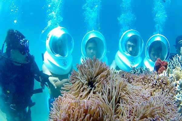 Ngắm san hô ở cù lao chàm