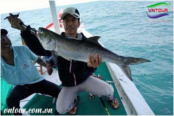 Tour câu cá phú quốc