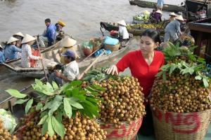 Tour du lịch Chợ Nổi Cái Bè - Cù lao An Bình 1 ngày