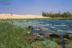 Ngắm vẻ đẹp cuốn hút của khu du lịch Bàu Trắng Phan Thiết