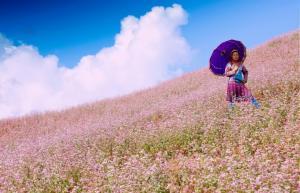 Háo hức đón đợi Lễ hội hoa tam giác mạch 2015