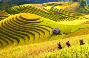 Tour du lịch Hà Nội - Lào Cai - Lũng Po - Sapa - Điện Biên - Sơn La