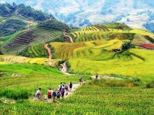 Tour  du lịch Hà Nội - Mộc Châu - Điện Biên - Mù Cang Chải 5 Ngày 4 đêm