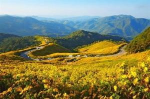 Tour du lịch Đà Lạt Tết Nguyên Đán 2017 4 ngày 3 đêm
