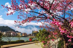 Tour du lịch Nha Trang - Đà Lạt Tết Nguyên Đán 2017 5 ngày 4 đêm