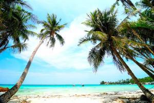 TIP - Du lịch đảo Nam Du Tết Nguyên Đán 3 ngày với chi phí cực thấp