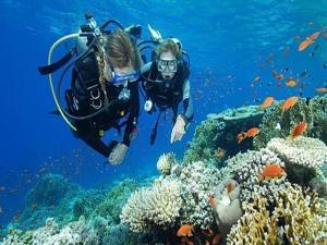 Đảo Hòn Tằm Nha Trang nhất định nên ghé qua một lần trong đời