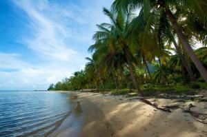 Ăn Chơi gì khi đi du lịch đảo Nam Du?