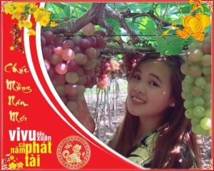 Tour du lịch Ninh Chữ Hang Rái 3N3Đ: Tết Nguyên Đán 2018