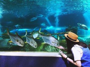 Những địa điểm du lịch Nha Trang hấp dẫn nhất
