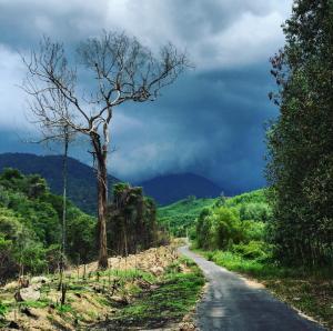 Thích mê cung đường phượt lên đỉnh Hòn Bà ở Nha Trang