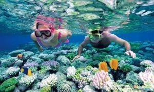 Tour du lịch đảo Phú Quốc: Câu cá  - Ngắm San Hô
