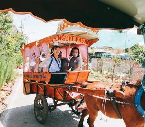 Tour du lịch Mỹ Tho - Hà Tiên - Phú Quốc