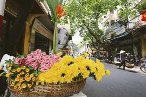 4 địa điểm ở Việt Nam bạn nên đến khi vào mùa thu
