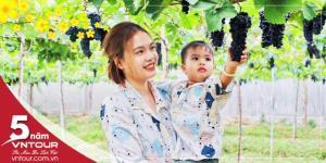 Tour du lịch Ninh Chữ Tết Âm Lịch 2019: Vịnh Vĩnh Hy - Hang Rái