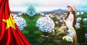 Tour du lịch Đà Lạt dịp lễ 30/4 - 1/5 năm 2019
