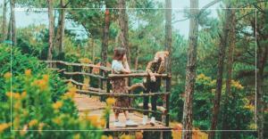 Cảm nhận sự bất tận từ núi rừng trong thung lũng vàng Đà Lạt