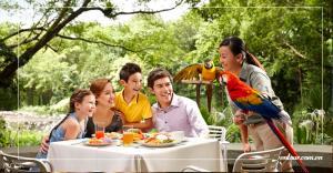 Tour du lịch Singapore 3N2Đ: Đào Sentosa - Vườn Chim Jurong