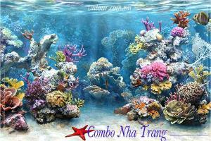Combo du lịch Nha Trang 4 ngày 3 đêm