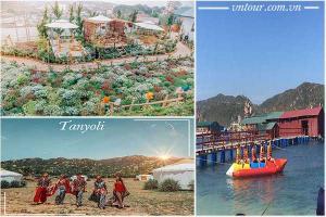 Tour du lịch Ninh Chữ Đà Lạt 4 ngày 3 đêm