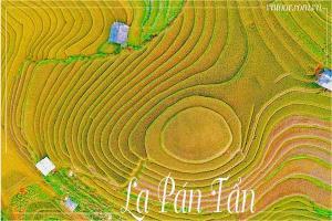 La Pán Tẩn mùa lúa chín- Nét đẹp nàng thiếu nữ vùng cao