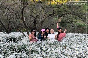 Tour Sapa Điện Biên Mộc Châu Mai Châu